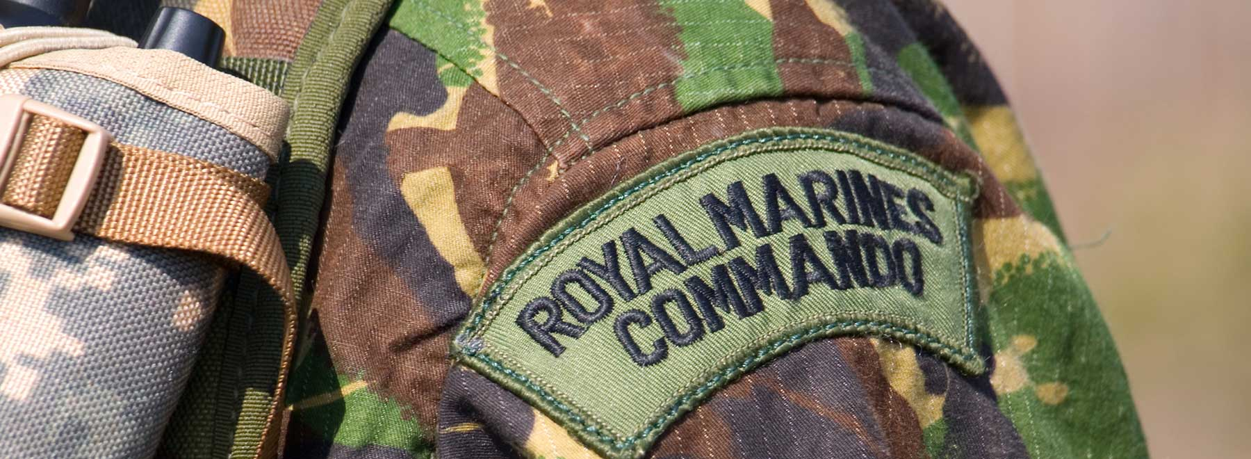 Forced into Marine Reserves? Army Alternative?