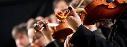 Close up of four violinists