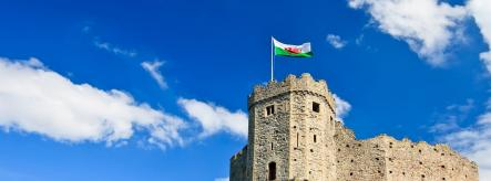 Welsh castle and flag - apprenticeships in Wales
