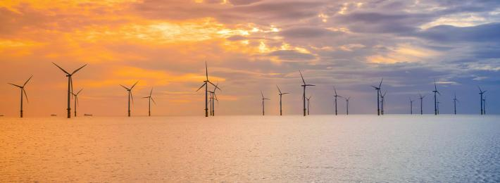 offshore windfarm - environmental careers