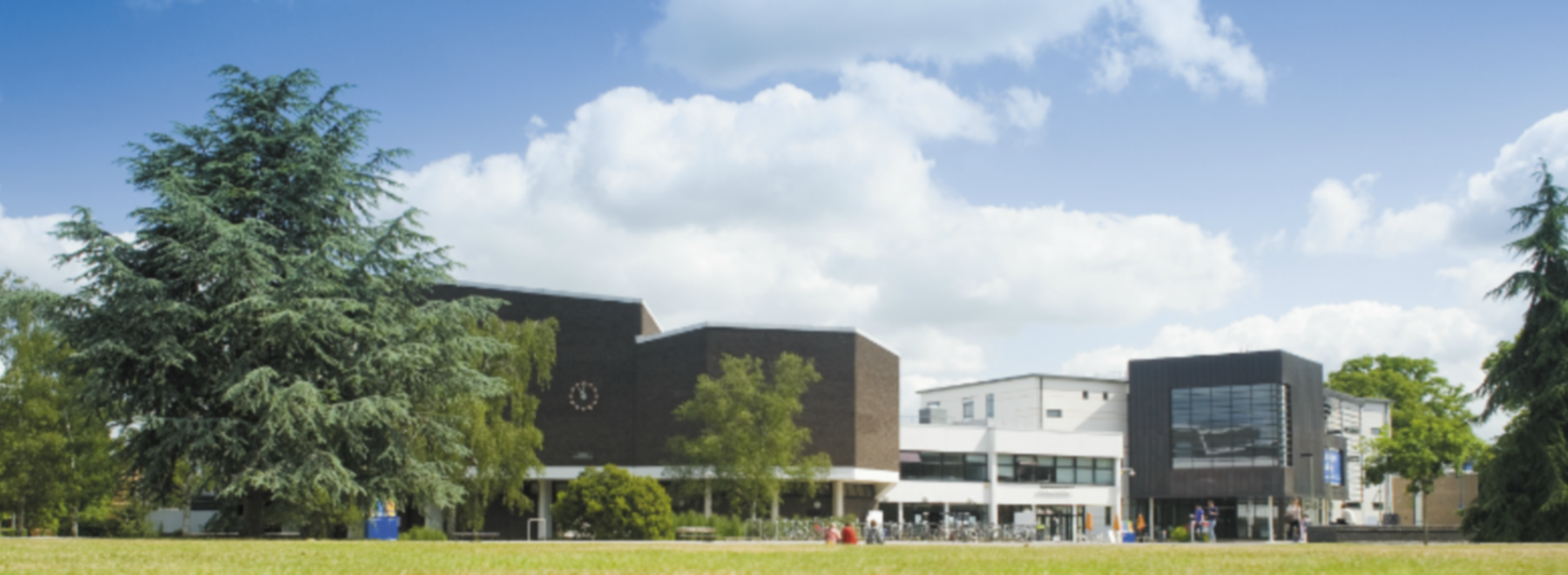 University of Reading header
